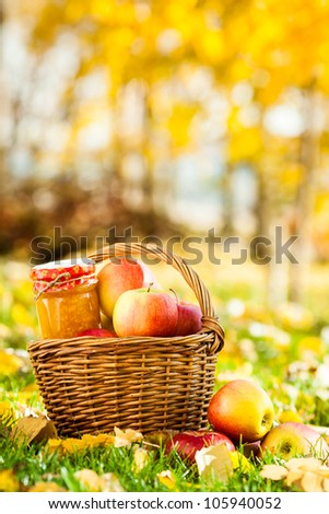 Homemade jam in jar and basket full of fresh juicy apples on a grass. Autumn harvest concept - stock photo