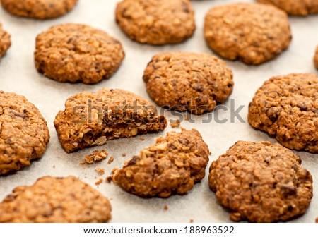 Homemade oatmeal cookies with chocolate and nuts - stock photo