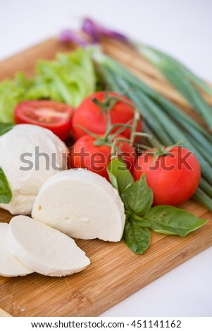 Homemade Organic Mozzarella Cheese with Tomato and Basil and onions.