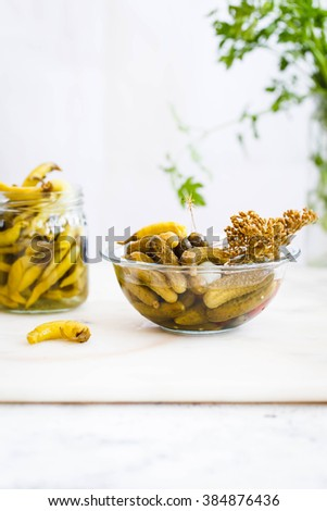 Homemade salted cucumbers plate glass on a the kitchen table of fresh cucumbers, garlic and dill. Rustic style, - stock photo
