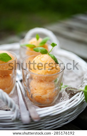 Homemade sorbet with tropical fruits and mint - stock photo