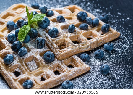 Homemade Waffles with Blueberries and powder sugar (close-up shot) - stock photo