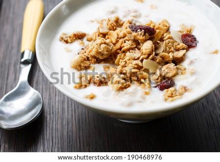 homemade yogurt with muesli - stock photo