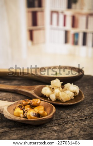 hominy and toasted corn nuts mote with tostado an aji sauce on wooden spoons ecuadorian traditional food selective focus - stock photo