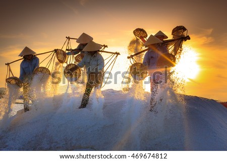 Hon Khoi, Khanh Hoa Province, Vietnam - July 30, 2016 :the women are working on salt field at dawn. Salt field Hon Khoi in Nha Trang, Viet Nam. Workers transporting salt from the fields Hon Khoi, VN