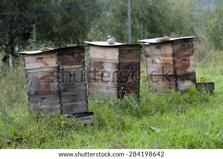 Honey beehive boxes in a field, Chokhor Valley, Bumthang District, Bhutan - stock photo