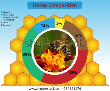 Honey composition - stock photo