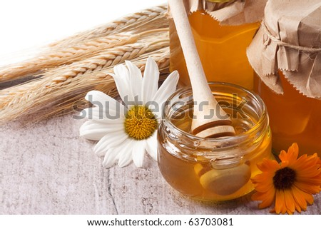 honey, flowers, spike isolated on table - stock photo