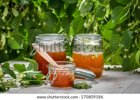 Honey in a jar on the background of linden trees - stock photo