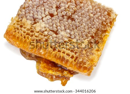 honey in honeycomb isolated on white background with shadow - stock photo