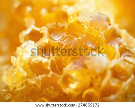 Honey in the Honeycomb background - stock photo