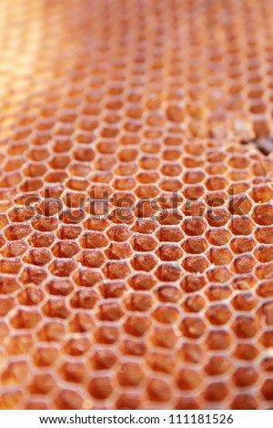 Honeycomb background, selective focus