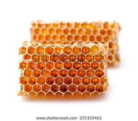 Honeycomb closeup on a white background . - stock photo