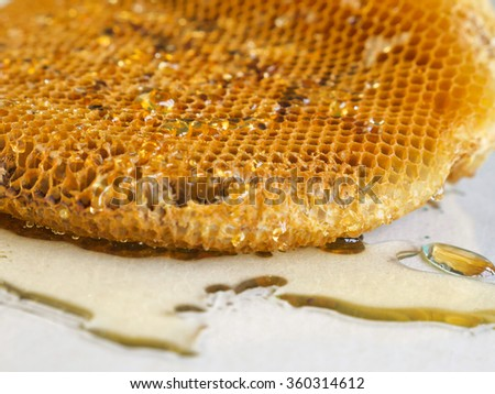 honeycomb with honey.Shallow depth of field. - stock photo