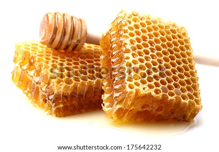 Honeycombs with spoon - stock photo