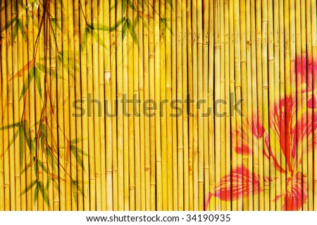hong kong orchid flower and bamboo background - stock photo