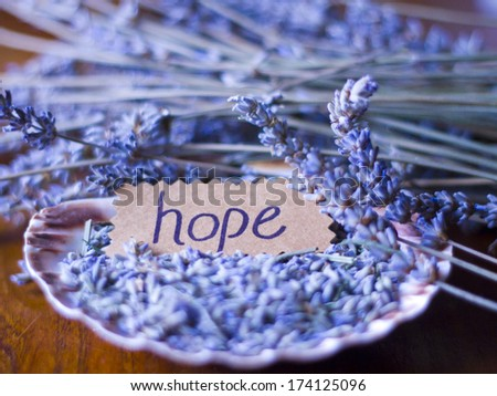 Hope' written on paper with dried lavenders - stock photo