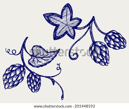 Hops. Doodle style. Raster version - stock photo