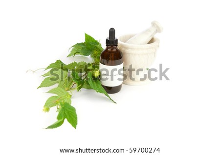 Hops herbal tincture, Humulus lupulus. The label was made for the photo shoot. Humulus lupulus is the Latin name of hops, not a brand name or a trademark. - stock photo