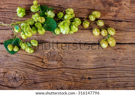 Hops on the wooden background