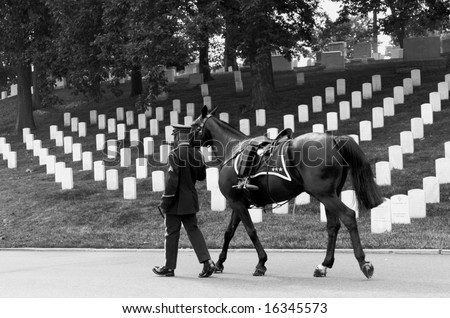 Horizontal black and white photo of riderless horse with boot reversed in stirrup being led in funeral procession at Arlington National Cemetery - stock photo