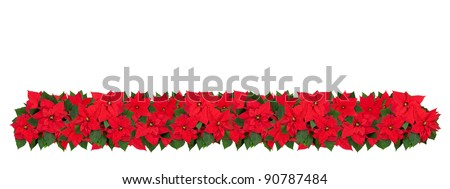 Horizontal Christmas border of poinsettia flowers. Large size. - stock photo