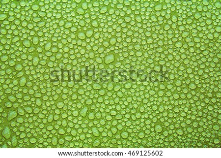 horizontal orientation close up of morning dew on a bright, vibrant green background, with copy space, Morning Dew on a Bright Green Background