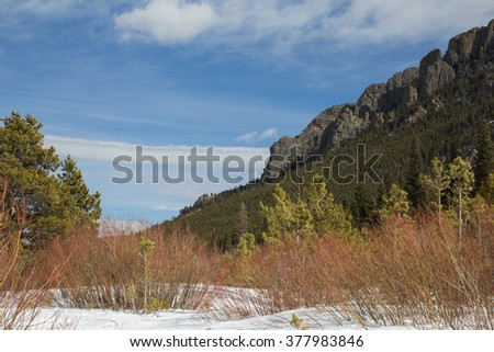 horizontal orientation color image with snow and winter foliage in the foreground, and rocky mountains in the background / Lily Lake Views in Rocky Mountain National Park in winter season - stock photo