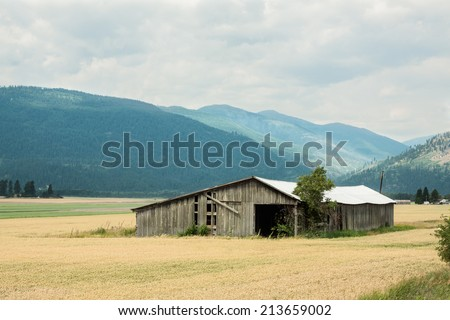 horizontal orientation of fields of golden grain and a rustic wooden barn in the foreground, with the Selkirk Mountain Range in the background and copy space / Rustic Barn and Selkirk Mountain Range - stock photo