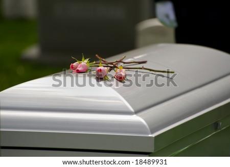 Horizontal photo of three roses on casket at Arlington National Cemetery - stock photo