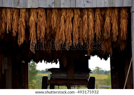 Hay Rack Stock Images Royalty Free Images Amp Vectors