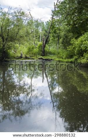 Horn pond, Arlington, MA, America - stock photo