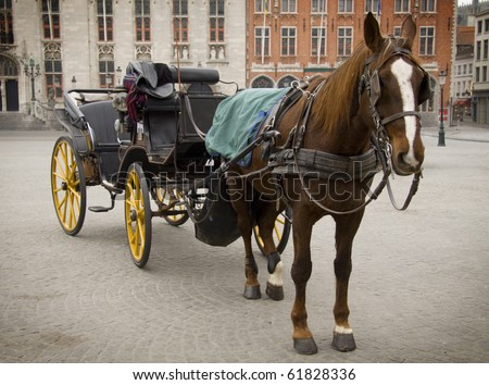 Horse and carriage - stock photo