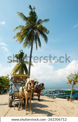 Horse and Cart on Gili Air, in West Nusa Tenggara, Indonesia - stock photo