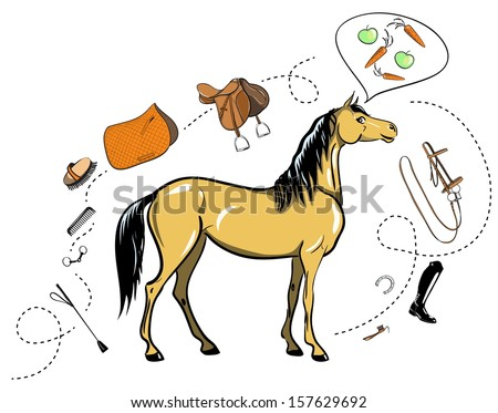 Horse and horseback riding tack - stock photo