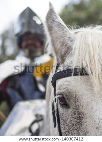 horse and knight, watching - stock photo