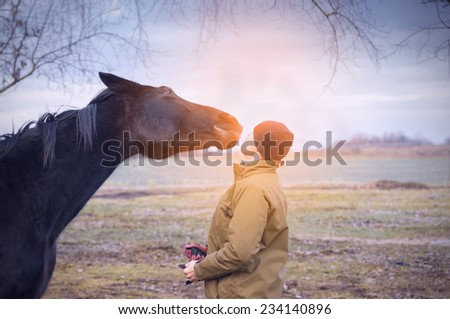 Horse and man at dawn sunlight on fields  - stock photo