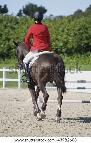 Horse and rider jogging at a show jumping event part of a three day eventing competition. Sport track at jumping show - stock photo