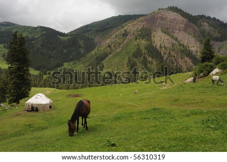 Horse at Diety Oguz in Kyrgyzstan - stock photo