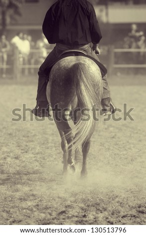 Horse back with raider while walking on dirty ground - stock photo