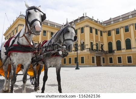 horse carriage near Schonbrunn  palace, Vienna, Austria - stock photo