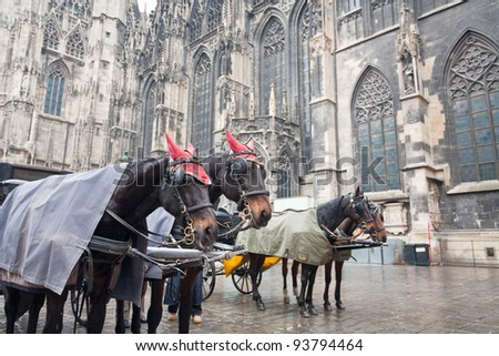 horse carriage near St. Stephan Cathedral, Vienna, Austria - stock photo