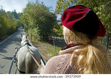 Horse carriage. On board view. - stock photo