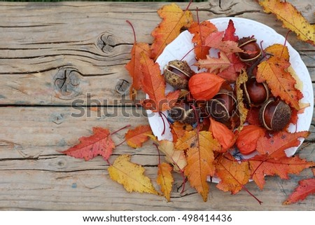 Horse chestnuts and orange leaves of maple on white porcelain plate on weathered wooden background. Daylight, original photo, autumnal scene in garden
