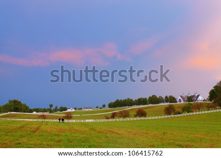 Horse farm after storm - stock photo