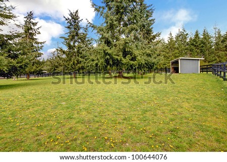 Horse farm pasture with small grey shed and fir trees. - stock photo