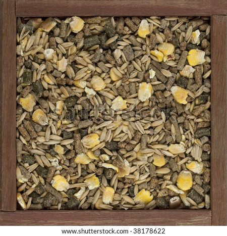 horse feed with corn, barley, oats grain and supplement granulates in  a rustic wooden box - stock photo