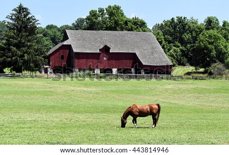 Horse grazing in front of red barn Lone horse grazing in pasture in front of old barn  - stock photo