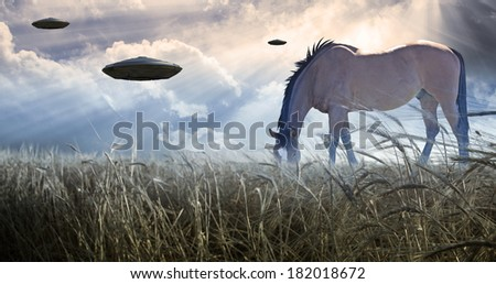 Horse grazing with UFOs floating nearby - stock photo