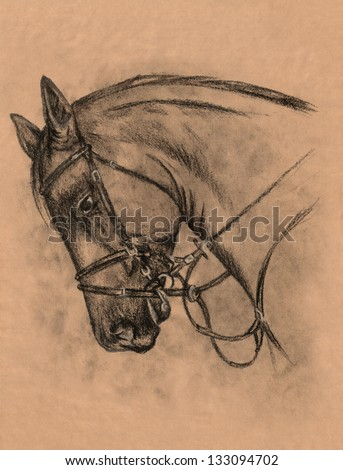 horse head with harness charcoal and pencil drawing - stock photo